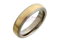 Titanium Ring Gold Inlaid